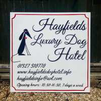 hayfields_luxury_dog_hotel_sign_handpainted_retro_script_lettering