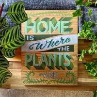 home-is-where-the-plants-are-sign-handpainted-commission-lettering-signwriting-signwriter
