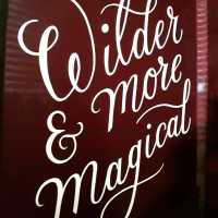 wilder-and-more-magical-handpainted-giffords-circus-script-handpainted